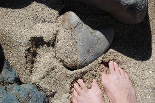 San Diego 2010 518