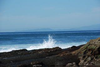 San Diego 2010 540