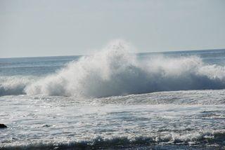 San Diego 2010 685