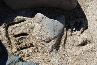 San Diego 2010 561