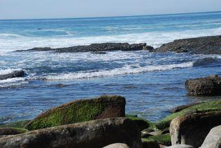 San Diego 2010 602