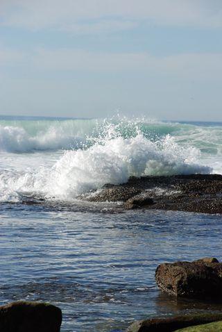 San Diego 2010 675
