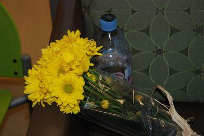 FebMarch2010 121